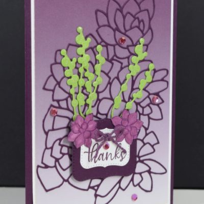 Potted Succulents Thank You Card
